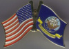 pin 4937 United States Navy with American Flag