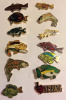 Lot of 12 Different Fish Hat and Lapel Pins